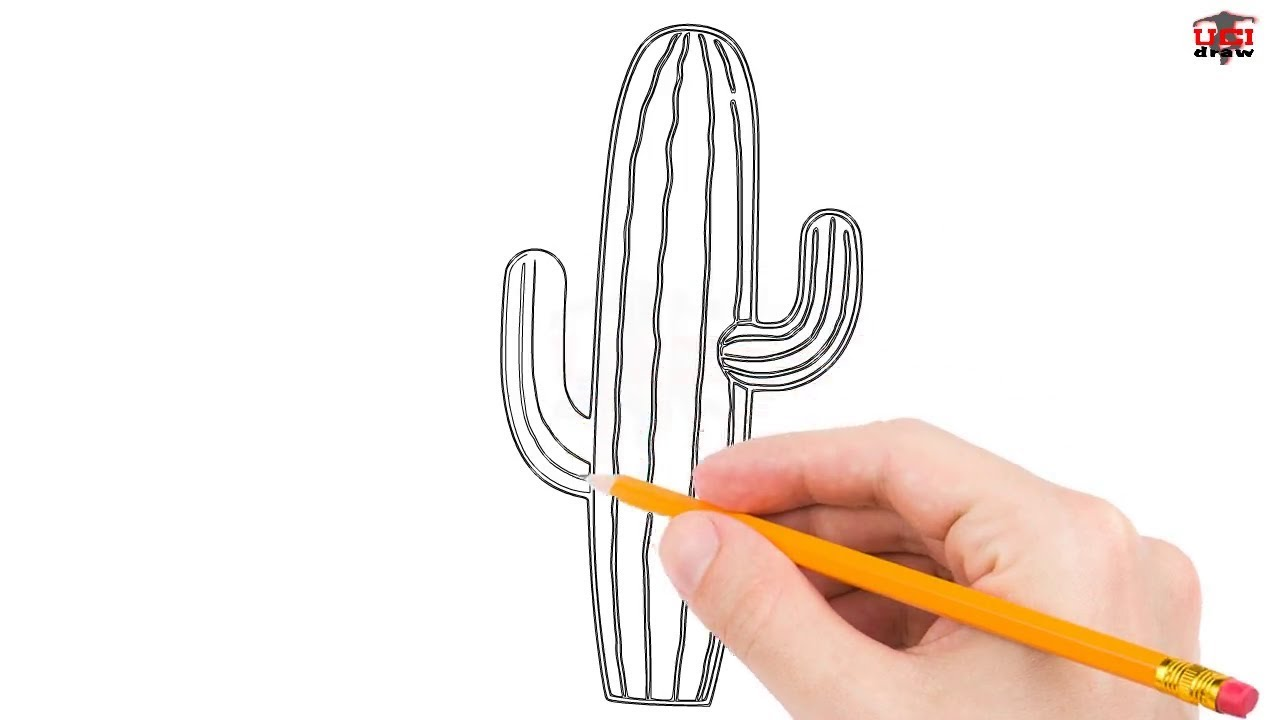 how to draw a cactus step by step easy for beginners kids. Black Bedroom Furniture Sets. Home Design Ideas