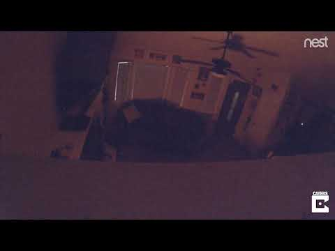 Nest Cam Captures Moment Anchorage Earthquake Hits