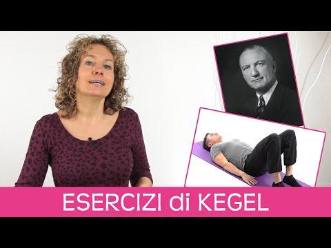 Allenamento Hiit Brucia Grassi Per Principianti from YouTube · Duration:  23 minutes 54 seconds
