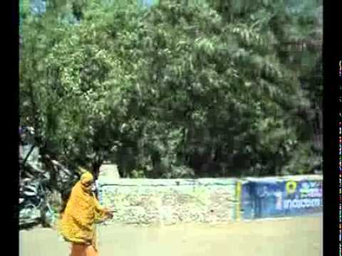Travel from MP nagar to sai board bhopal