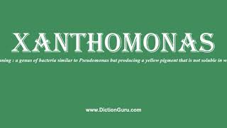 xanthomonas: How to pronounce xanthomonas with Phonetic and Examples