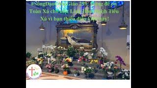 #SốngĐạoCôngGiáo 259:  Đừng để ơn Toàn Xá cho các Linh Hồn thành Tiểu Xá vì thiếu điều này