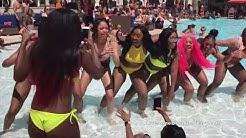 Paradise Nevada - Las Vegas Pool Party