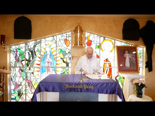 Day 7 - Fr. Michael Barry - Mercy Novena - Divine Mercy Chaplet