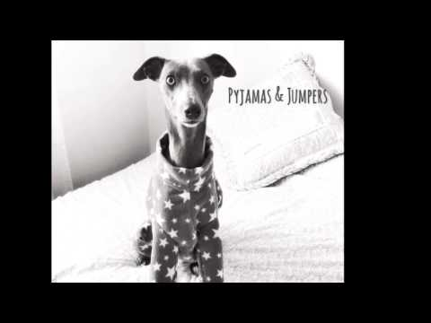 The Trendy Whippet - Clothing & Accessories for Whippets, Greyhounds, Italian Greyhounds, Lurchers