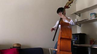坂本冬美さんの『また君に恋してる』をウッドベースで弾いてみました。 ...