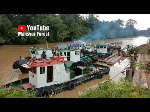 Persiapan Armada Tug Boat Dalam Rangka Tarik Rakit Kayu Log Di Sungai