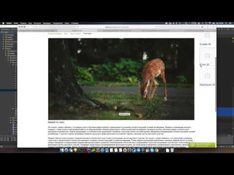 Битрикс: Создание блога с комментариями, оценками и просмотрами