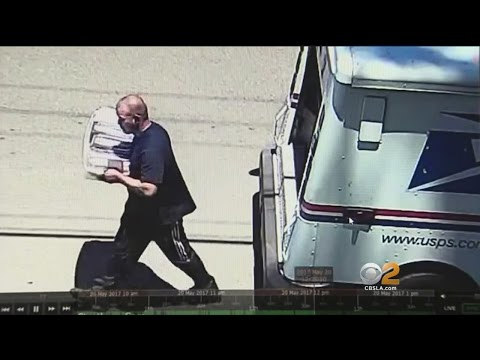 Captured On Camera: Bold Thieves Steal Boxes Of Mail From Postal Truck