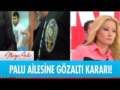 Palu ailesi fertleri gözaltına alındı! - Müge Anlı ile Tatlı Sert 9 Ocak 2019
