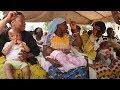 母乳が健康な赤ちゃんを育てる/日本ユニセフ協会