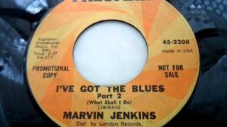 Marvin jenkins - I