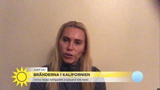 """Bränderna i Kalifornien – Anna Anka evakuerad: """"Inom en sekund kan man förlora… - Nyhetsmorgon (TV4)"""