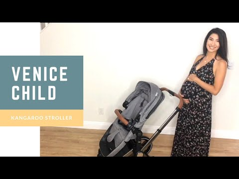 Venice Child Luxury Stroller Review: Front and Back Facing Seat, Bassinet, Carseat Adapter and More!