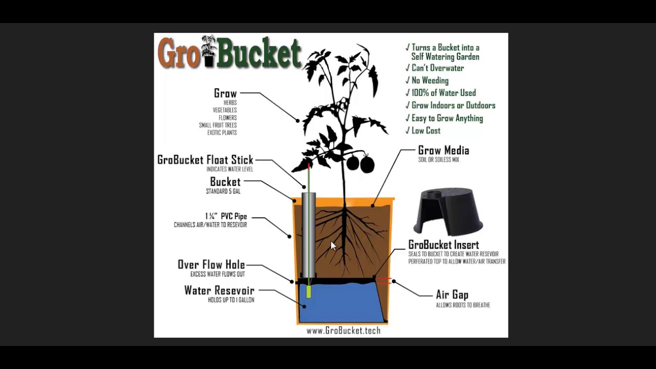 Quick & Easy Self Watering Growing Container Made With a 5 Gallon Bucket -  YouTube