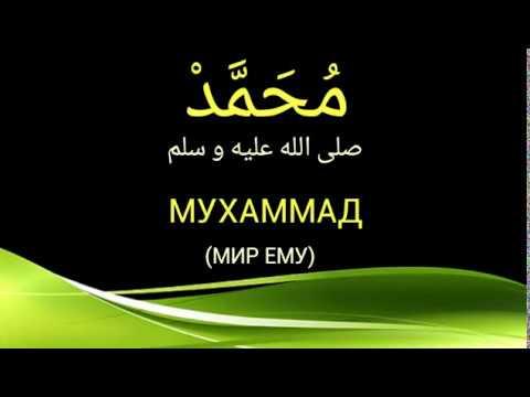 НАШИД МУХАММАД ( МИР ЕМУ)