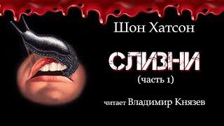 """Аудиокнига: Шон Хатсон """"Слизни"""" (часть 1). Читает Владимир Князев. Ужасы, хоррор"""