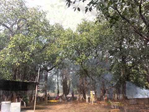 Secret of Sustainability,Badchichholi near Nagpur,Maharashtra,India