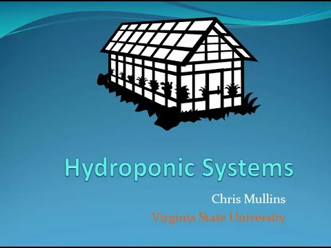 Best Practices for Edible Hydroponic Greenhouse Production: Hydroponic Production Systems