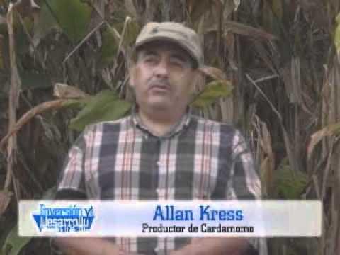 Inversion y Desarrollo con Luis Velasquez 205 1/1 Guatemala, Mayor Productor Mundial de Cardamomo