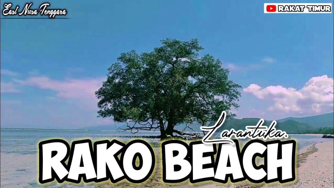 Pantai Rako_Larantuka   Tempat Wisata Flores Timur   Vlog Traveling