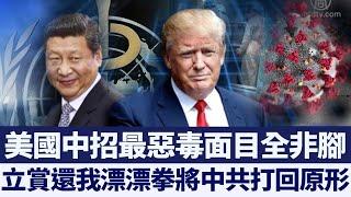 中共肺炎國際傳播 中共隱瞞禍害全球|新唐人亞太電視|20200323