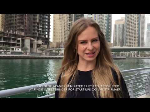 INVESTOR FINDING DELEGATION TO DUBAI