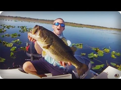 Huge mat punching fish giant bass caught in lake for Lake kissimmee fishing report