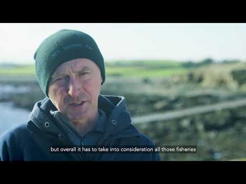 Irish Inshore Fisheries Sector Strategy 2019-2023 | BIM