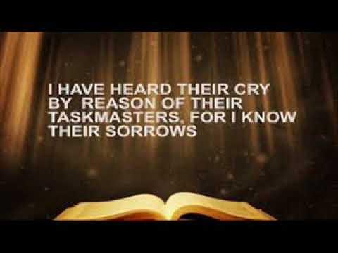 Preacher David Lyalls 07/11/18