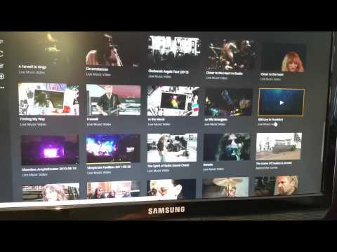 Plex Artist and Music Videos Feature