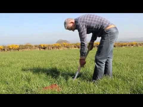 Agricultural Marketing Wales
