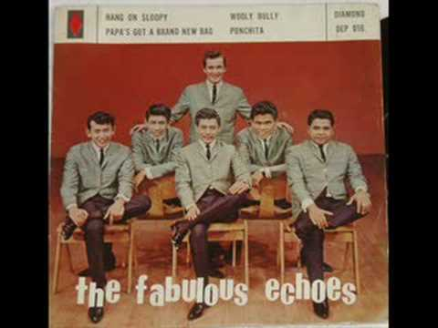 The Fabulous Echoes psych pop