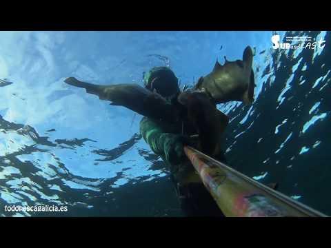Pesca submarina en Invierno, primer día