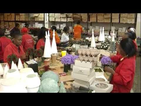 Entrepreneur: Floriculture business
