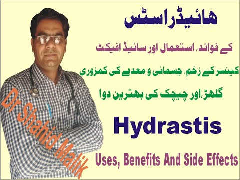 hydrastis-(ھائیڈراسٹس)-uses,-dosage,-benifets-and-side-effect