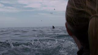 Кадры из фильма Над глубиной: Хроника выживания