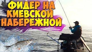 Рыбалка на КИЕВСКОЙ НАБЕРЕЖНОЙ! Ловля плотвы на ФИДЕР осенью! Тактический фидер на Днепре!