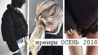видео Что модно носить - бренды и фото одежды