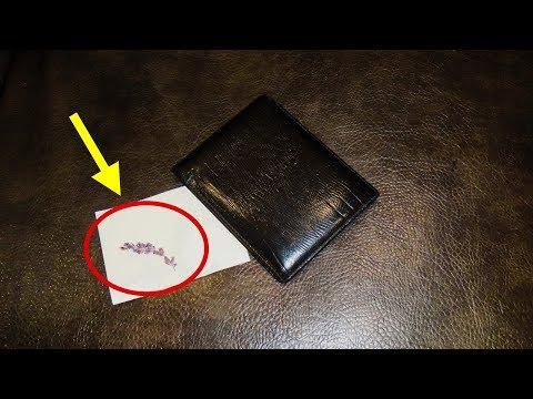 Положи это в свой денежный кошелек. Как привлечь деньги в свою жизнь используя Руны