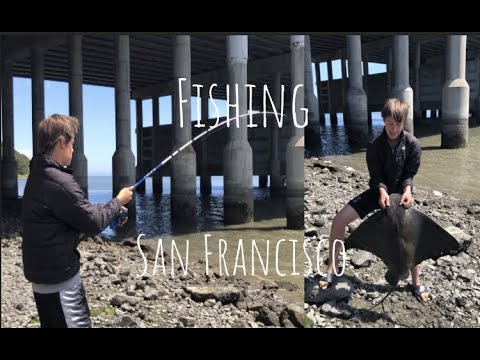 How To CATCH Fish In The SF Bay (Part 1.)