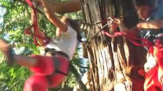 Sorties collectivités, centre de loisirs, en pays diois acroparc aventure - Drôme - Vercors