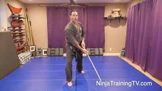 Sword Cutting Technique: Tonbo