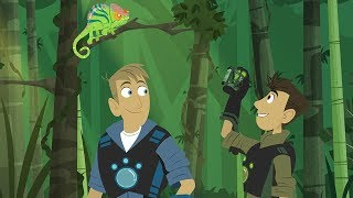 Wild Kratts - Going Wild with the Kratt Brothers | Trailer