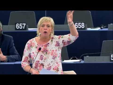 Hilde Vautmans 15 Mar 2017 plenary speech on EU security agenda