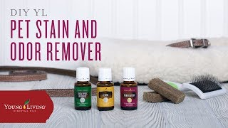 DIY Pet Odor Deodorizer with Young Living Essential Oils