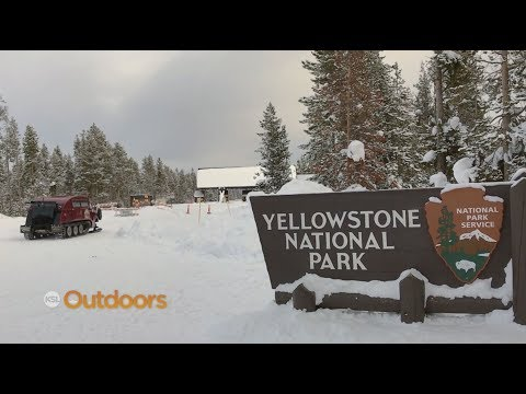 Visiting Yellowstone National Park in Fall and Winter