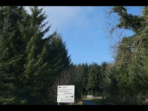 Sitka Spruce Afforestation of Leitrim - Ear to the Ground 2018