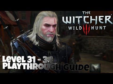The Witcher  Beginner Build