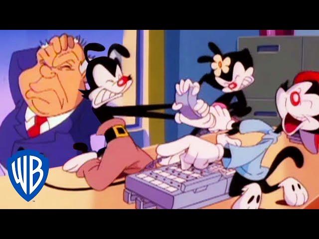 Animaniacs   The Warners Become Secretaries   Classic Cartoon   WB Kids